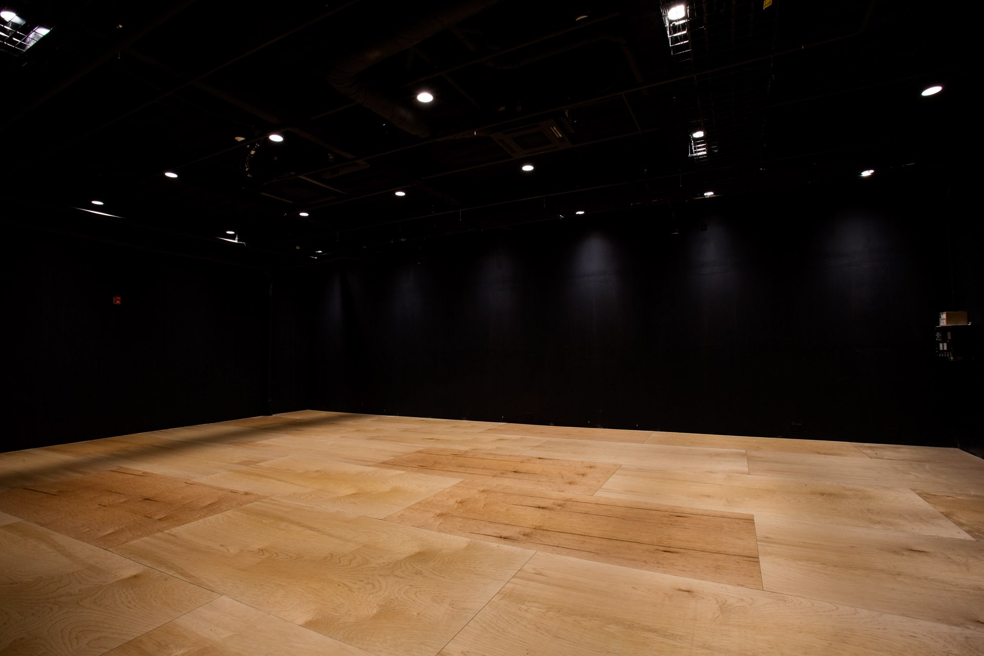 Stage, Egyptian Black Box Theater, architectural design by Elliott Workgroup