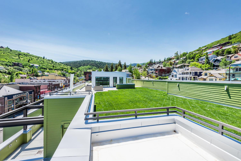 Rooftop garden, Parkite Penthouse, architectural design by Elliott Workgroup